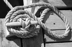 Kikker met touw